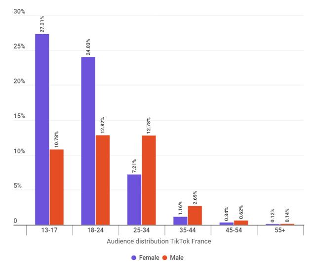 L'audience des influenceurs de TikTok en France : sexe et âge - HypeAuditor