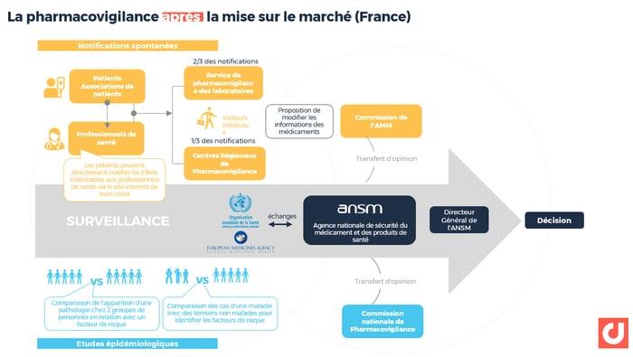 Le principe de la pharmacovigilance après la mise sur le marché (France) - schéma simplifié.