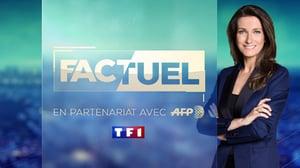 Factuel TF1
