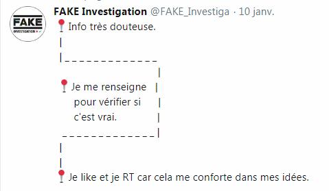 Fake Investigation