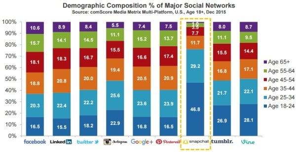 La composition démographique des réseaux sociaux