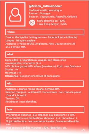 Fiche profil schématique du micro influenceur (extrait)